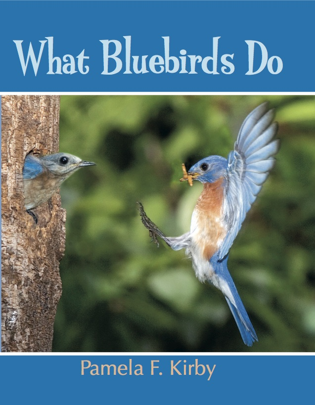 Storytime Station: What Bluebirds Do