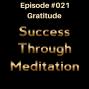 Artwork for Episode #021 - Gratitude