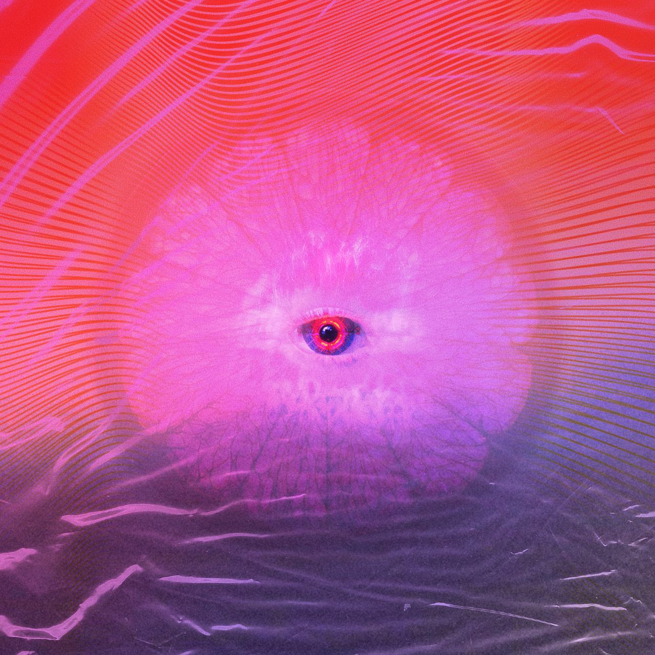 WITNESS - vol.001 show art