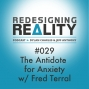 Artwork for Redesigning Reality #029 - The Antidote for Anxiety w/ Fred Terral