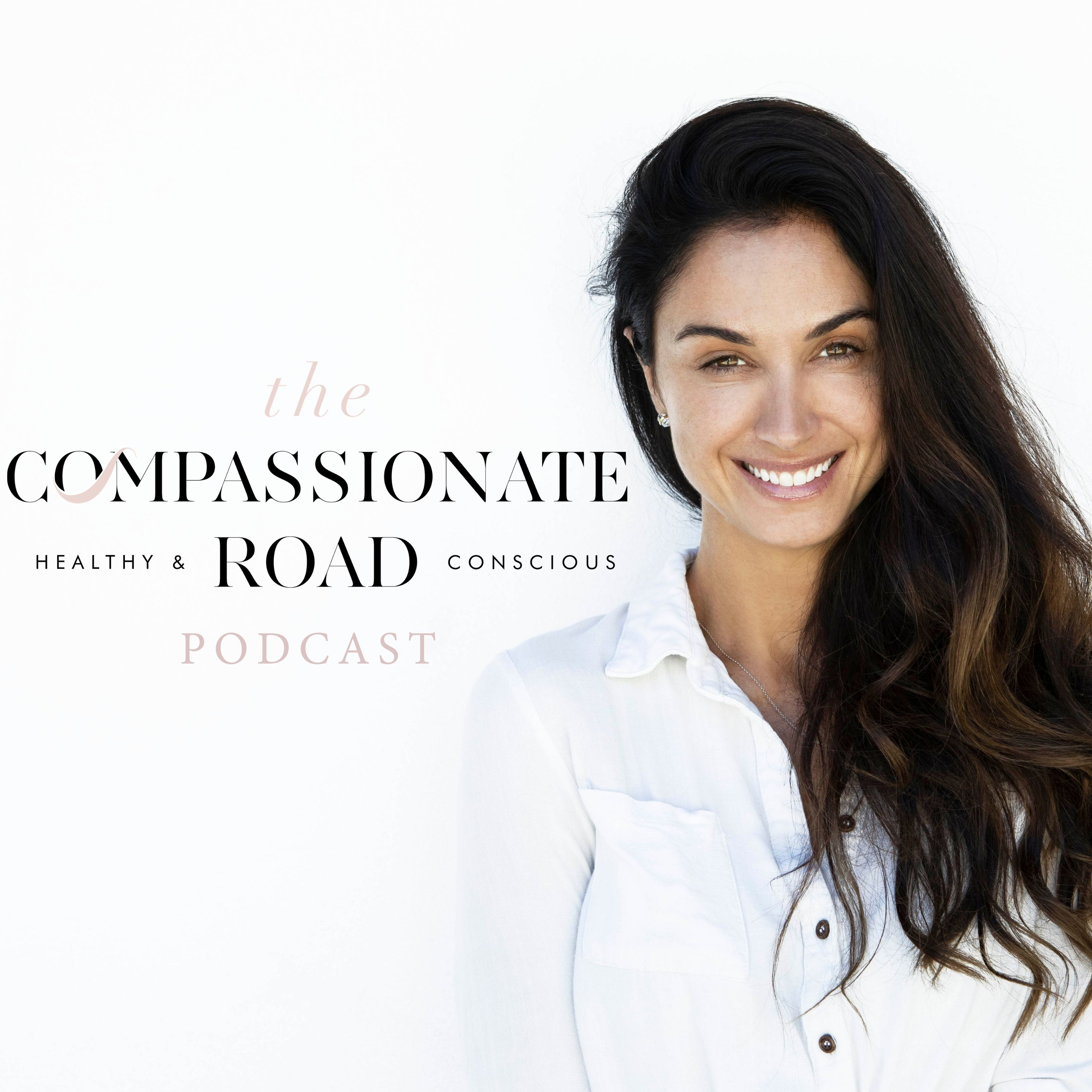 The Compassionate Road show art