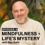Artwork for 08: Mindfulness + Life's Mystery with Bob Stahl