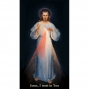 Artwork for The Divine Mercy Chaplet: A Moving Prayer for Forgiveness