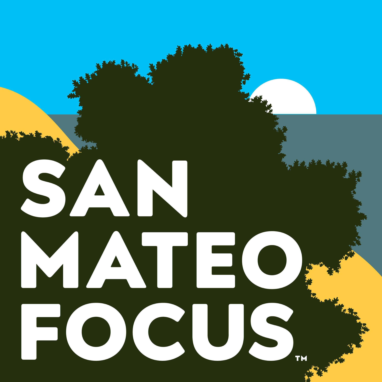 San Mateo Focus show art