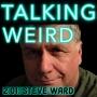 Artwork for Steve Ward talks UFOs, High Strangeness, Mothman, John Keel, Jacques Vallee