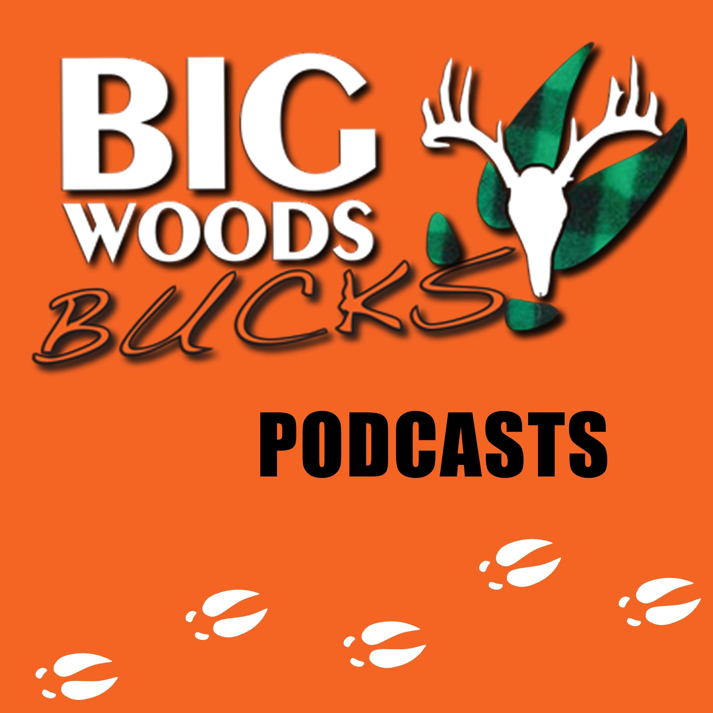 Big Woods Bucks - Deer Hunting -Education & Entertainment show art