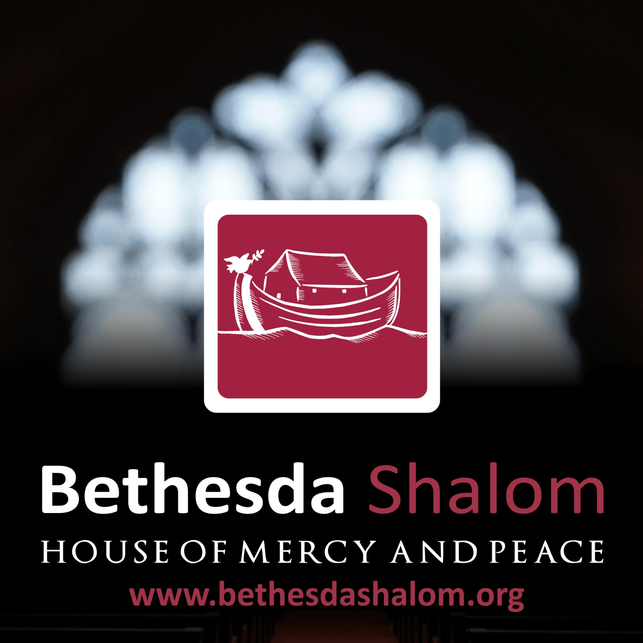 Bethesda Shalom show art