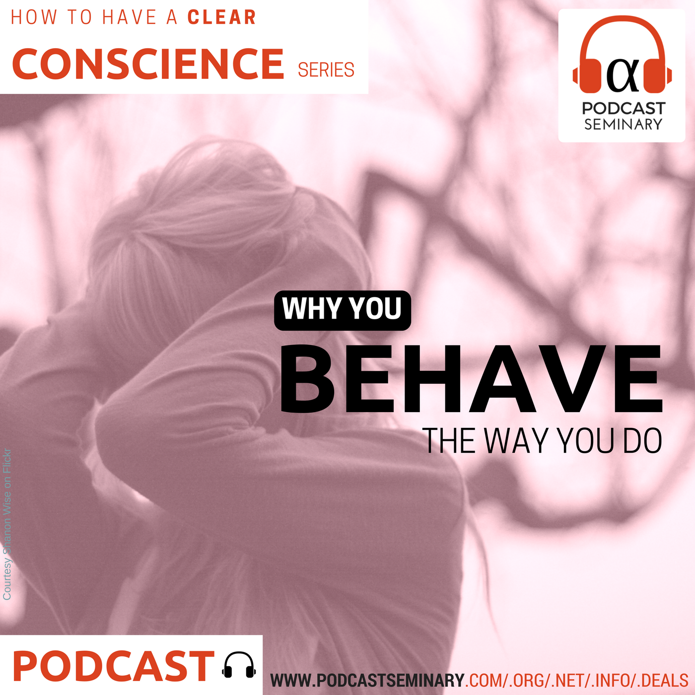 Artwork for Why You Behave the Way You Do (E021)
