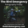 Artwork for 049 Fotography Friday with Nicolas Rakotopare