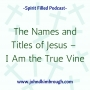 Artwork for The Names and Titles of Jesus –  I Am the True Vine Episode 99