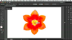 How To Use The Pen Tool in Adobe Illustrator, Photoshop and InDesign CS6