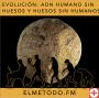 Artwork for Evolución, ADN humano sin huesos y huesos sin humanos