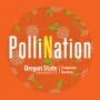 Artwork for 30 Steve Frank - Navigating Urban Environments For Pollinators