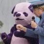 Artwork for TSRP #253: Purple Pandemonium