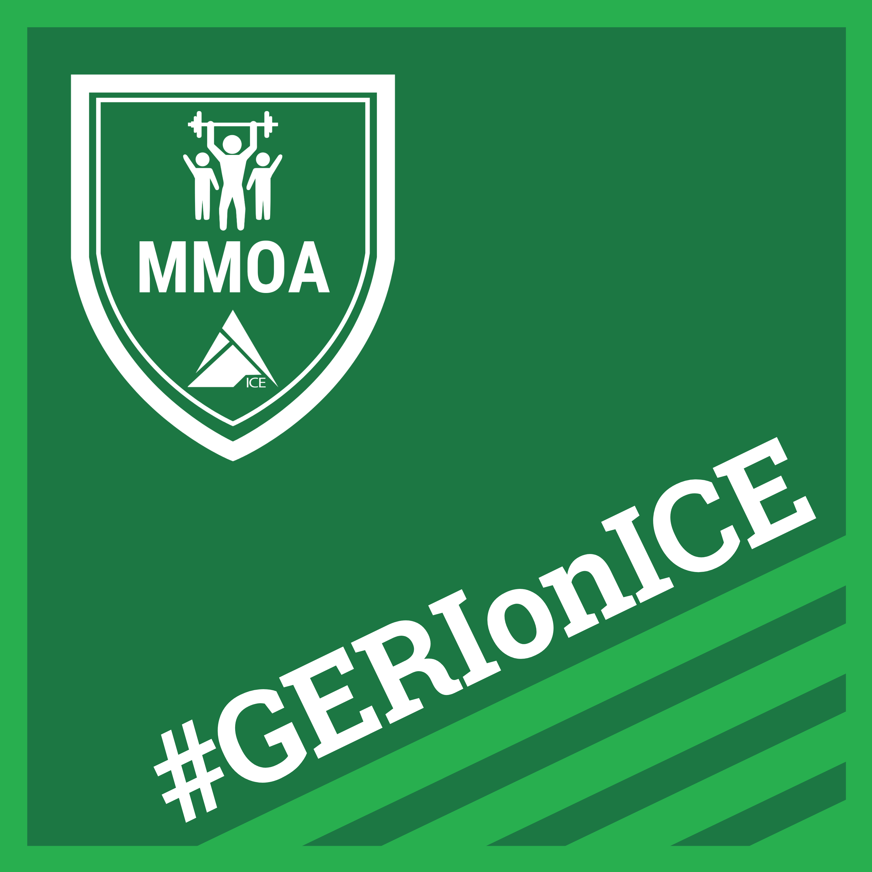 #GERIonICE - Physical Therapy | Fitness | Geriatrics