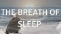 Artwork for Series 2 Episode 21 The Breath of Sleep A guided meditation to help you sleep