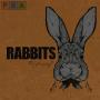 Artwork for Episode 000: Introducing Rabbits