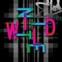 Artwork for Wild Nite