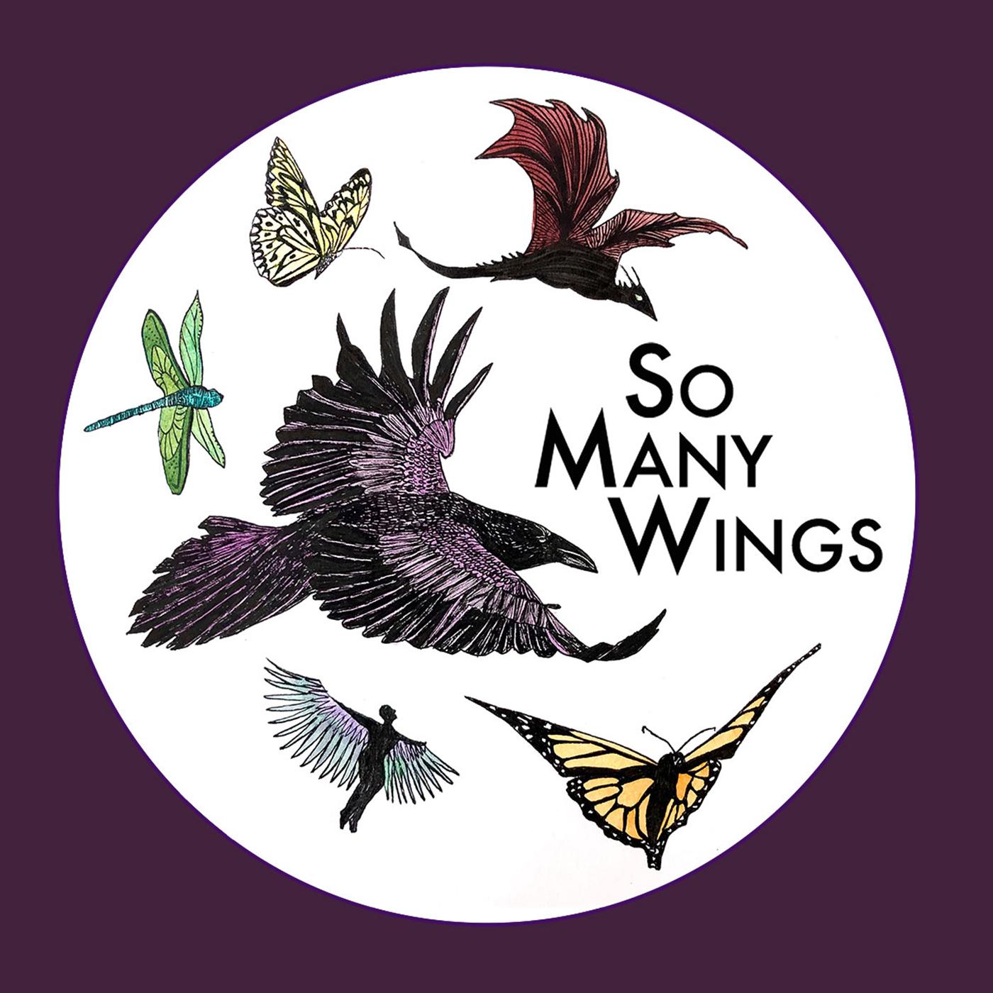 So Many Wings show art