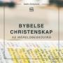Artwork for Bybelse Christenskap: As wêreldbeskouing