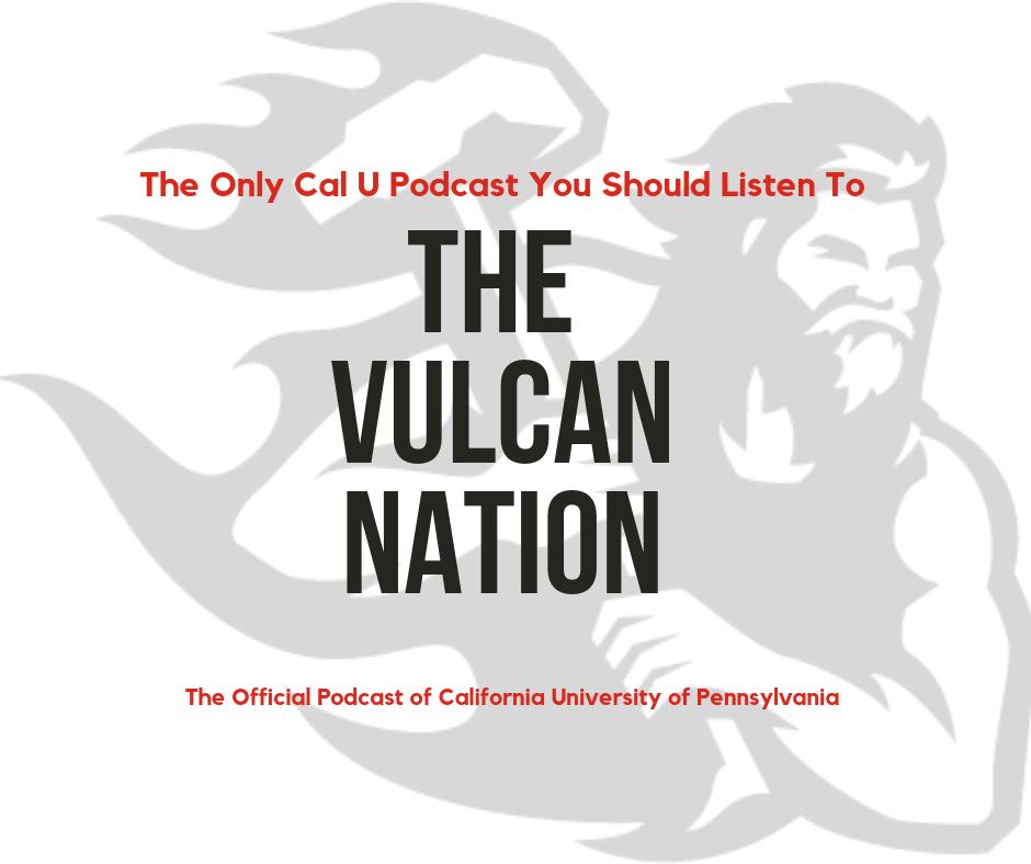 The Vulcan Nation show art