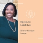 Artwork for Big Law to Family Law - Britney Harrison's career journey and what to expect when working with a divorce lawyer