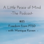 Artwork for Episode 85: Freedom from PTSD with Monique Koven