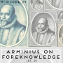 Artwork for Minisode 29: Arminius on Foreknowledge (Part 2)