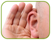 Preventing Permanent Hearing Loss