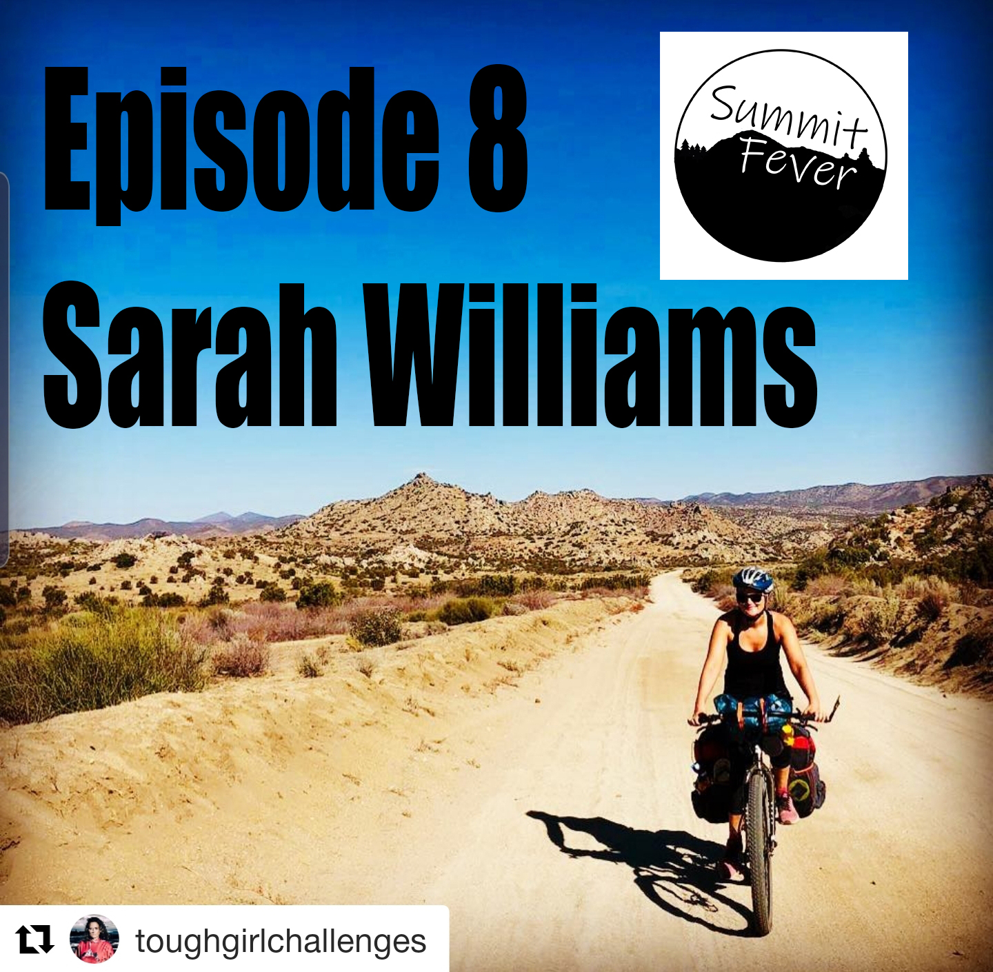 Episode 8: Sarah Williams show art