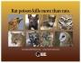 Artwork for Tai Moses : Santa Cruz Raptors Are The Solution