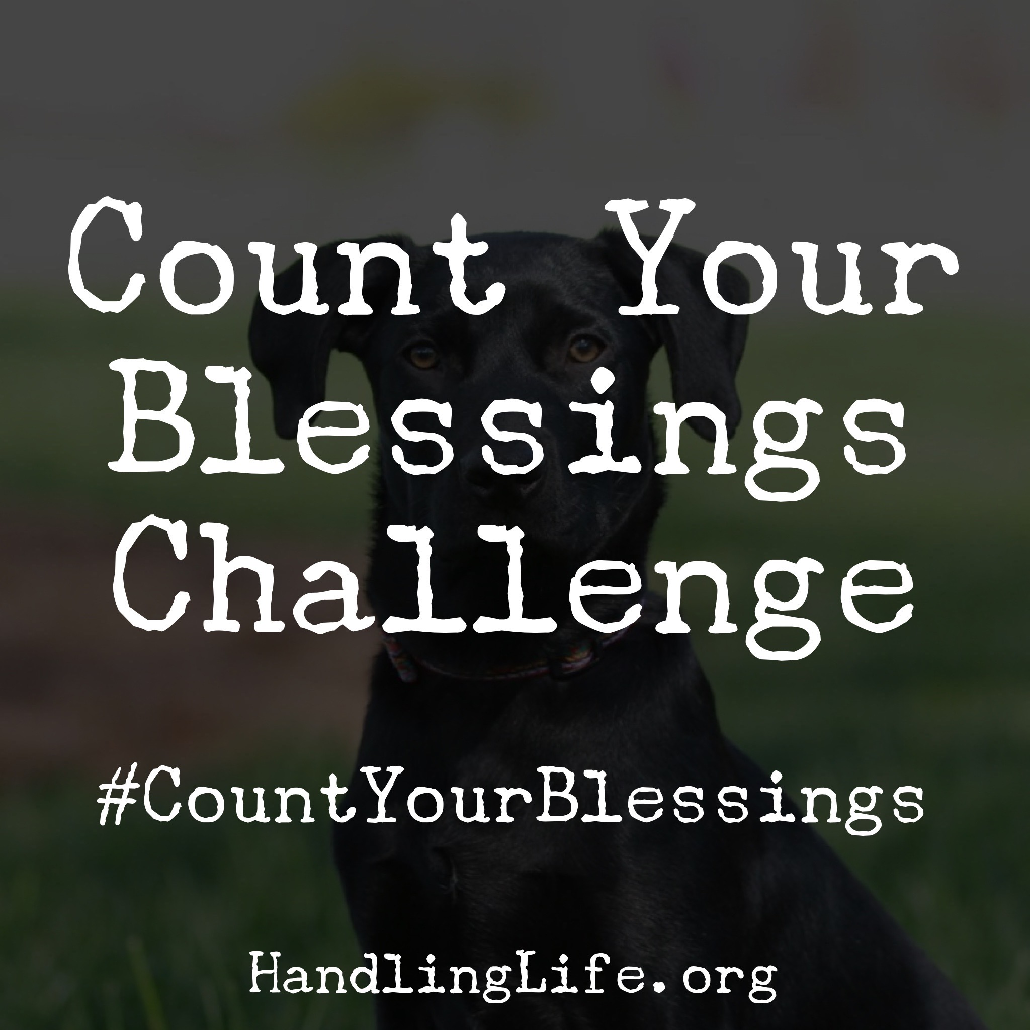 Artwork for #CountYourBlessings Challenge