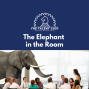 Artwork for Elephant In The Room
