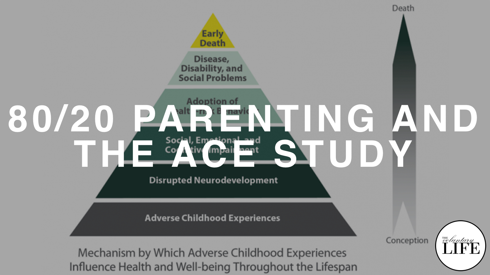 316 80/20 Parenting and the ACE Study