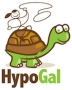 Artwork for HypoGal, DirectLabs.com Medical Labs With Your Doctor's Fee