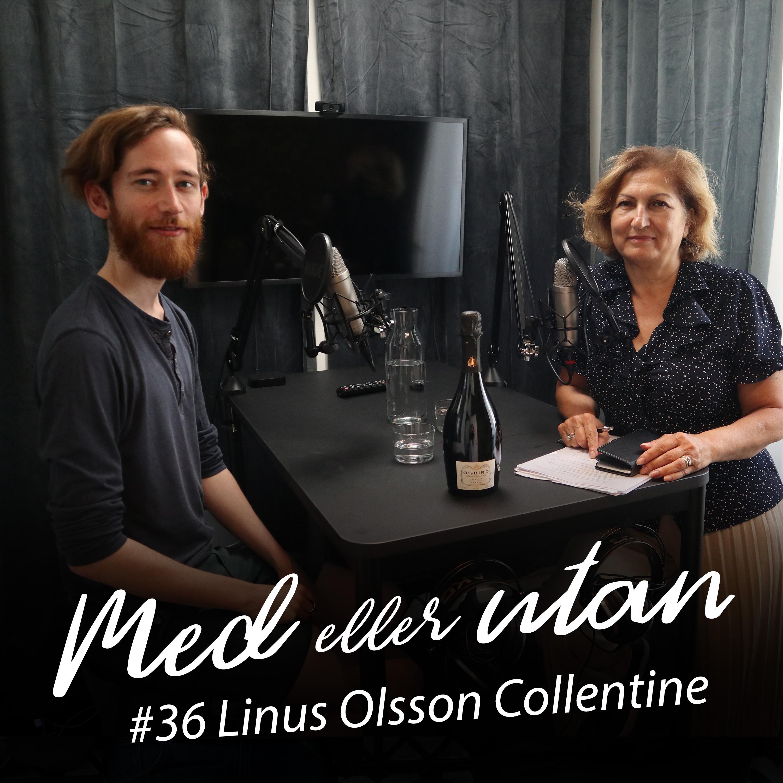 #36 Linus Olsson Collentine