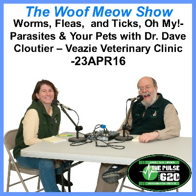 Worms, Fleas,  and Ticks, Oh My!-Parasites & Your Pets with Dr. Dave Cloutier – Veazie Veterinary Clinic