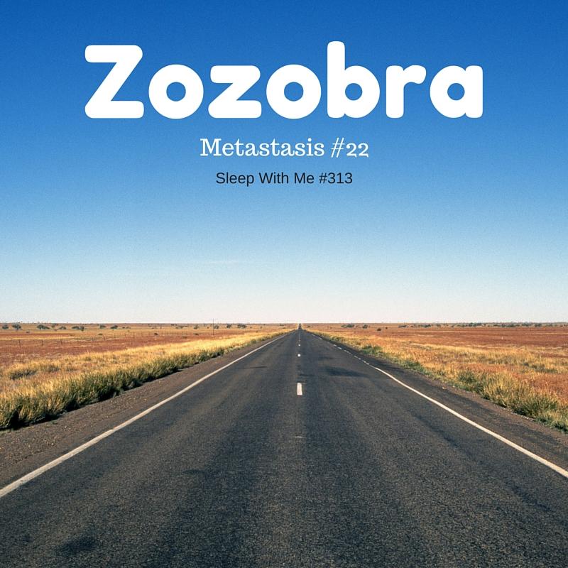 Zozobra | Metastasis #22 Breaking Bad Sleep With Language Learning | Sleep With Me #313