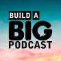 Artwork for Big Podcast Insider - Issue 43