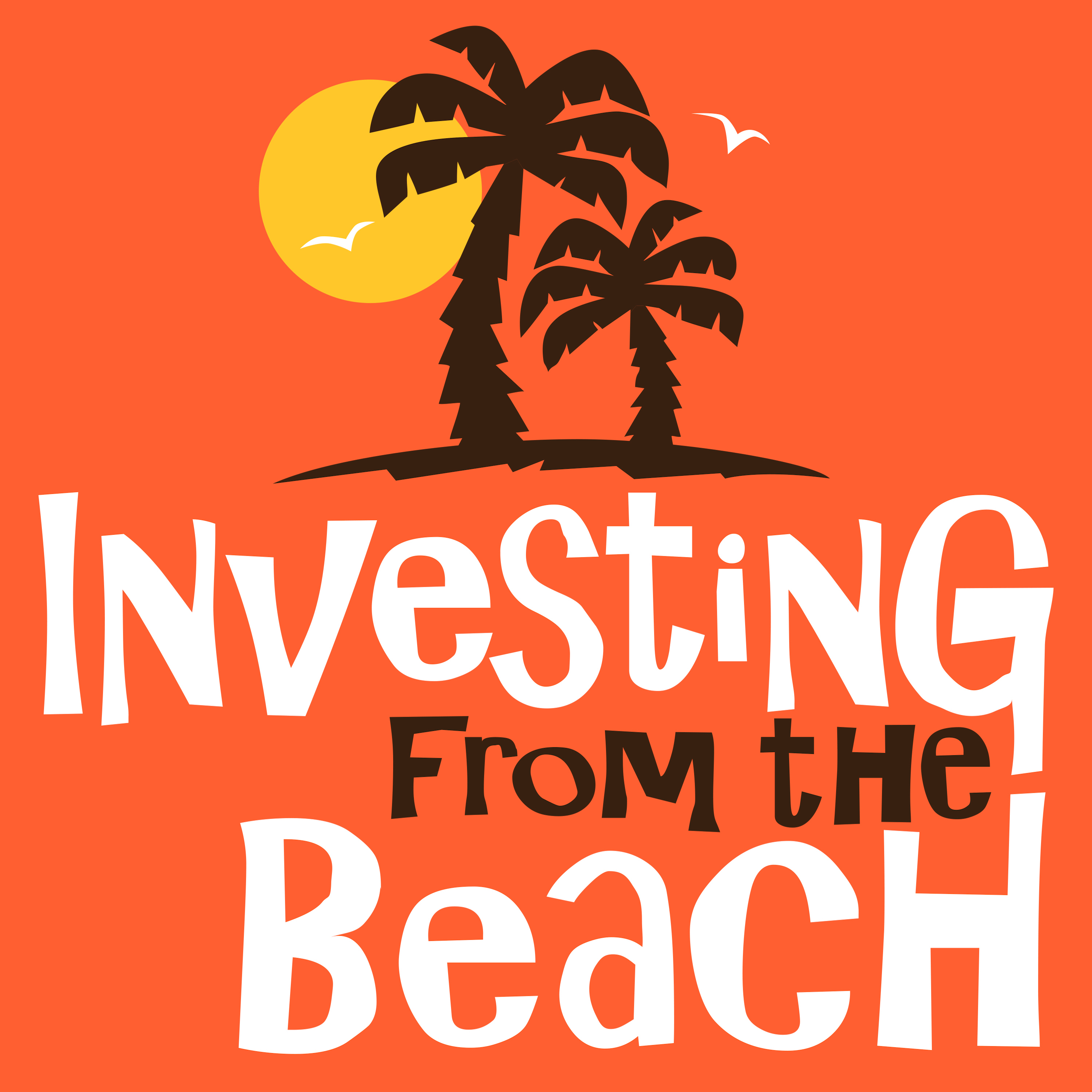 Investing From The Beach show art