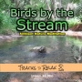 Artwork for Birds By The Stream - Ambient Nature Meditation