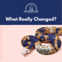 Artwork for What Really Changed?