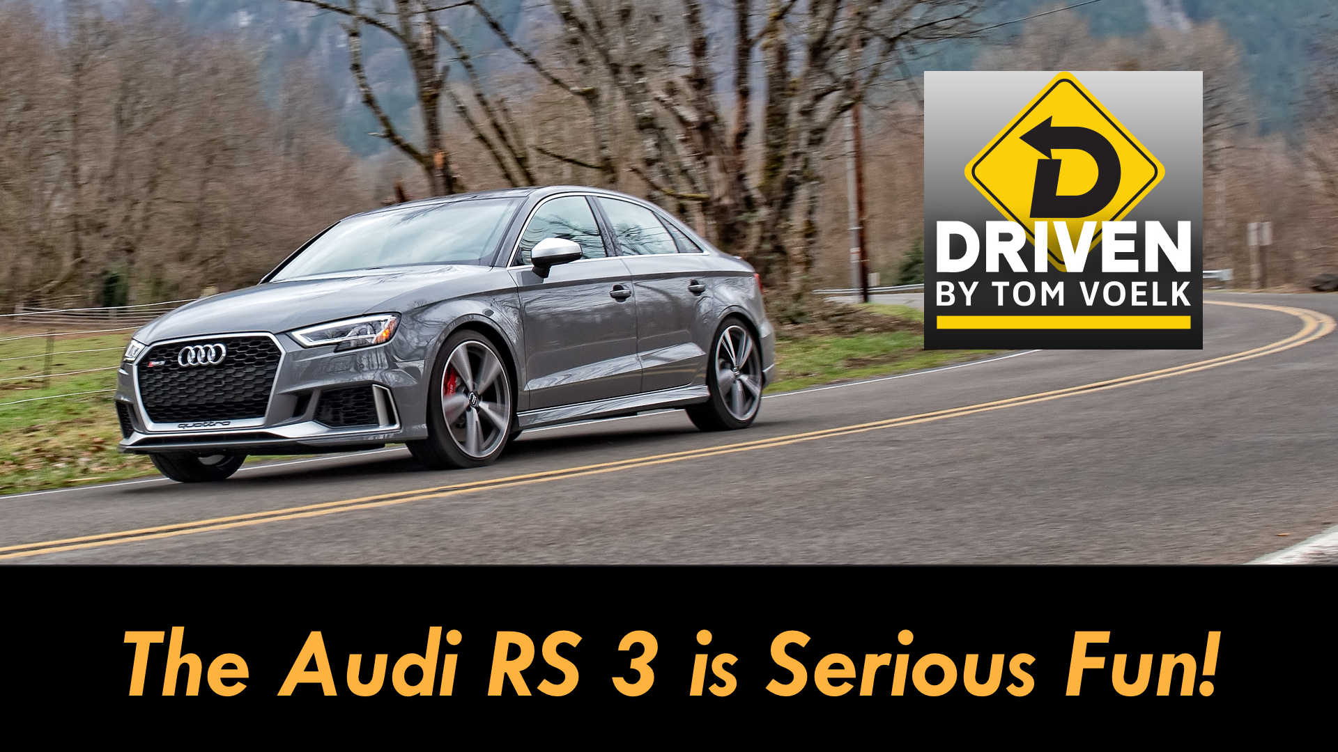 Artwork for 2019 Audi RS 3