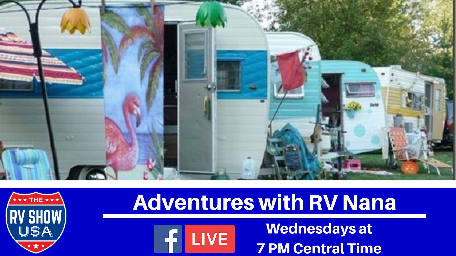 Artwork for Adventures with RV Nana