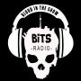 Artwork for BITS Radio Episode 30 - Erin Berry & Audrey Cummings and Noah Danby