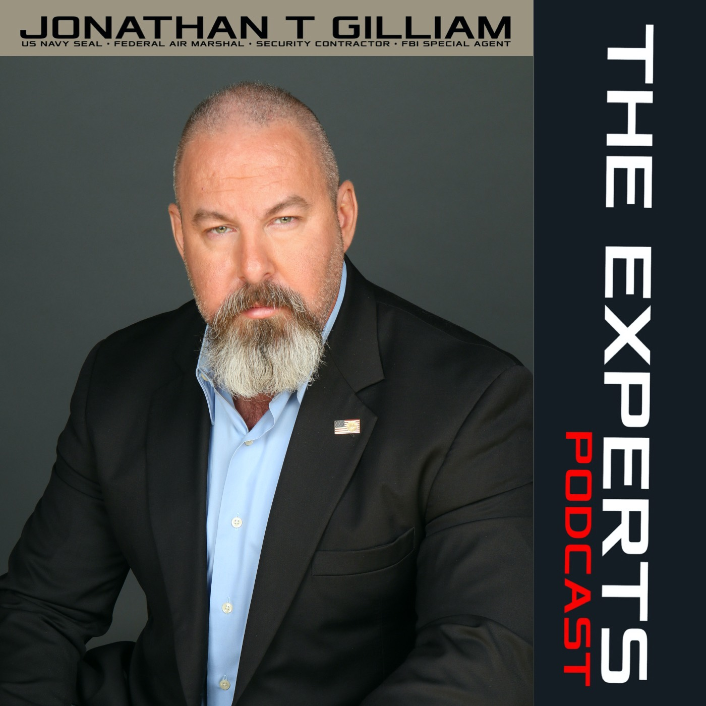 THE EXPERTS podcast show art