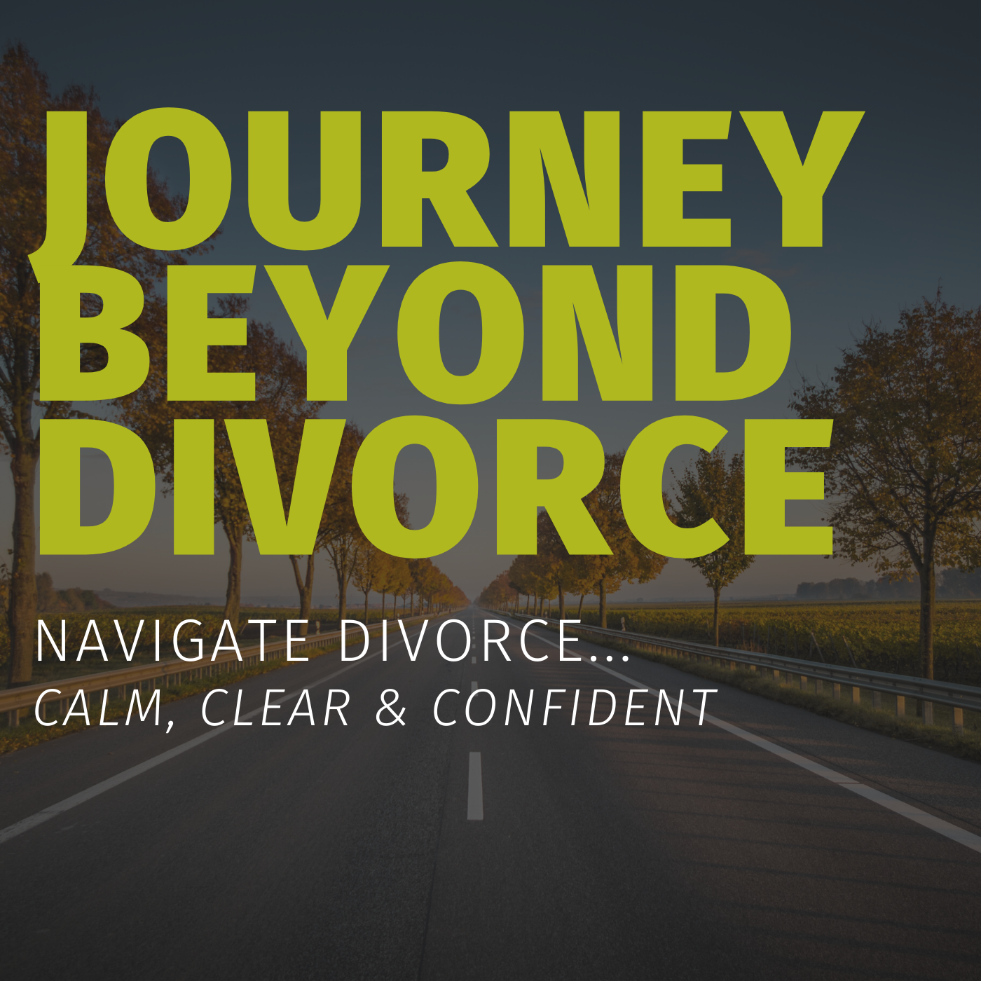 Divorce Source Radio - How I Reclaimed My Sanity, Self Esteem and My Life after My High Conflict Divorce