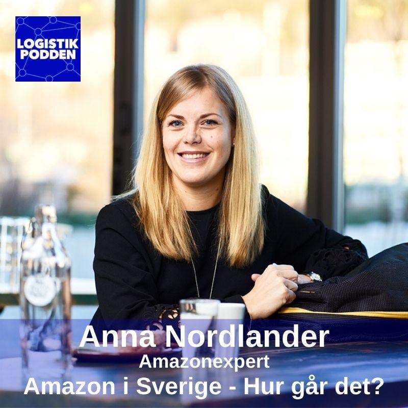 Anna Nordlander, Amazonexpert: Amazon i Sverige - hur går det?