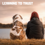 Artwork for Learning To Trust