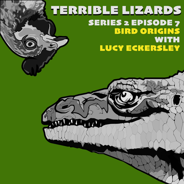 TLS02E07 Bird origins